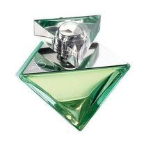 Britney Spears Believe Eua de Parfum 100ML