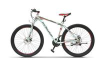 Pro-Mountain Bike 29 Knight PM250 Silver