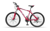 Pro-Mountain Bike Aro 26 PM250BV Red
