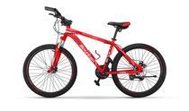 "Pro-Mountain Bike ""26-19"" PM350 Red"
