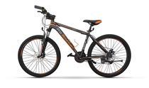 """Pro-Mountain Bike """"29-17"""" PM350 Grey"""