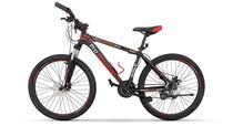 "Pro-Mountain Bike ""29-17"" PM350 Red"